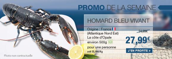 Profitez de notre promotion de la semaine sur le Homard bleu vivant de la côte d'Opale.