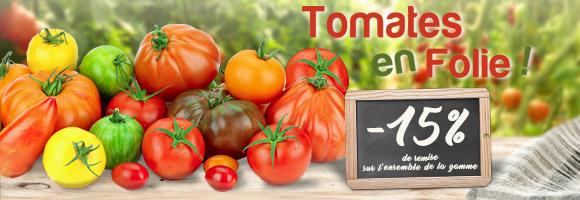 Découvrez nos promotions et nouveautés sur la tomate.