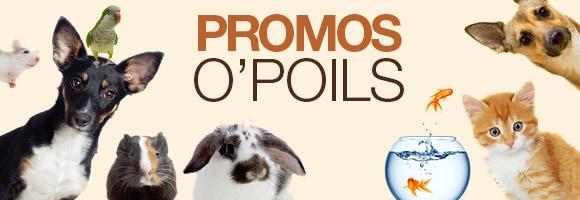 Vos animaux aussi ont droit à leur plein de promotions ! Découvrez vite notre sélection de produits promotionnés !