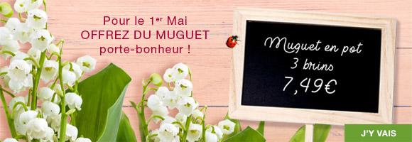 Pour le 1er mai offrez du muguet porte-bonheur !