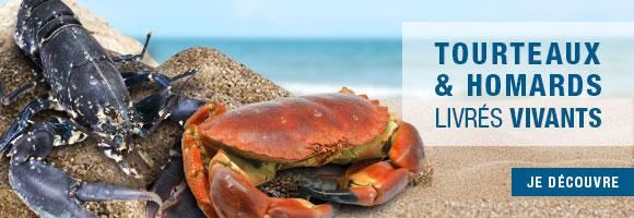 Retrouvez de nouveau les homards & tourteaux, livrés vivants chez vous