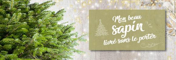 Noël approche à grands pas, il est temps de trouver le sapin idéal pour égayer vos fêtes de fin d'année ! Sous quel sapin le Père Noël déposera-t-il ses cadeaux cette année ? Sapin artificiel ou sapin naturel ? houra.fr vous aide à choisir votre arbre de Noël grâce à une sélection tendance et de qualité. Parce que sans lui Noël ne serait pas vraiment Noël, découvrez notre large gamme de sapins pour laisser entrer la magie de Noël dans votre maison et sublimer votre décoration de fête !
