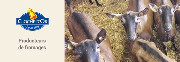 Fromagerie traditionnelle qui perpétue la tradition du savoir-faire et dont les fabrications sont artisanales car le fait main est garant d'une authenticité préservée. Spécialiste en fromage de chèvre, il vous propose par exemple le traditionnel Sainte Maure de Touraine mais aussi une spécialité telle que le Coeur de Touraine cendrée. Vous pouvez aussi retrouvez une gamme BIO.