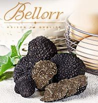 Bellorr