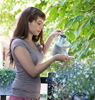 Plantes pour balcons et terrasses
