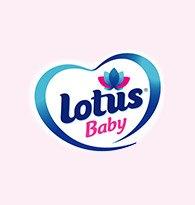 Lotus Baby