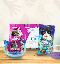 Friandises et lait pour chats