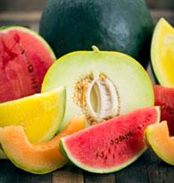 Melon, Pastèque